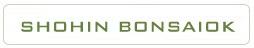 shohin bonsai vasarlas rendeles a marczika bonsai studio webshop bolt kinalatabol