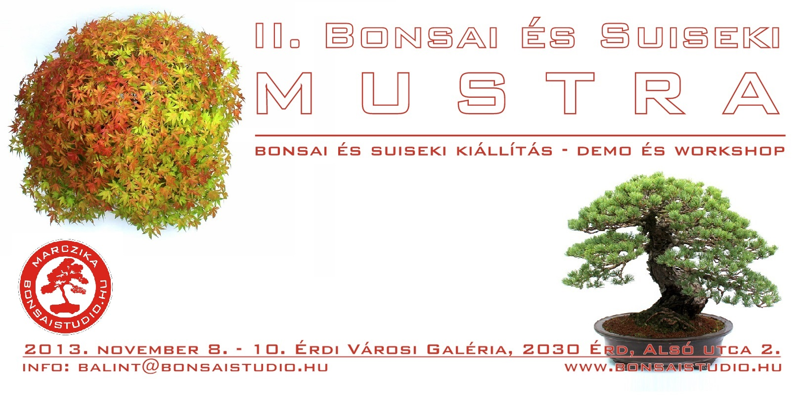 bonsai es suiseki mustra kiallitas demo workshop a marczika bonsai studio rendezvenye
