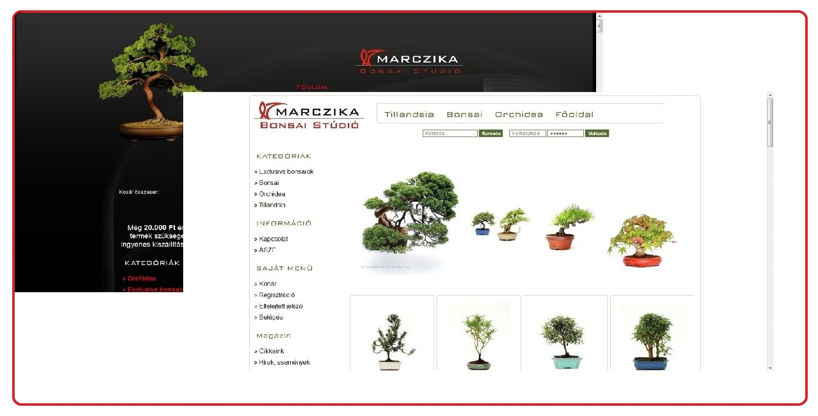 bonsai webaruhaz bonsai webshop internetes bonsai vasarlasi lehetoseg