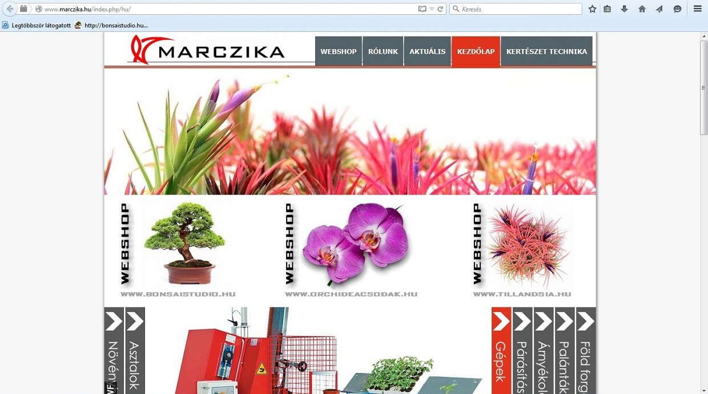marczika bonsai orchidea tillandsia kertészet es webaruhaz